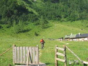 mountainbiken_zur_alm